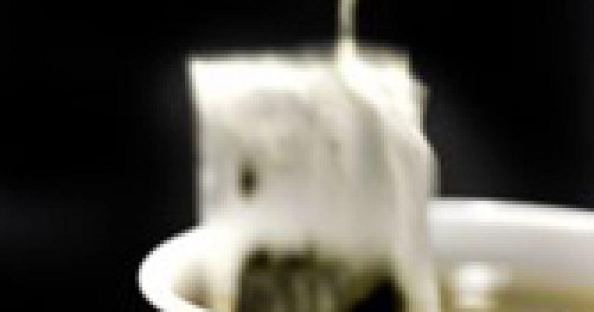 A filteres tea mérgező lehet