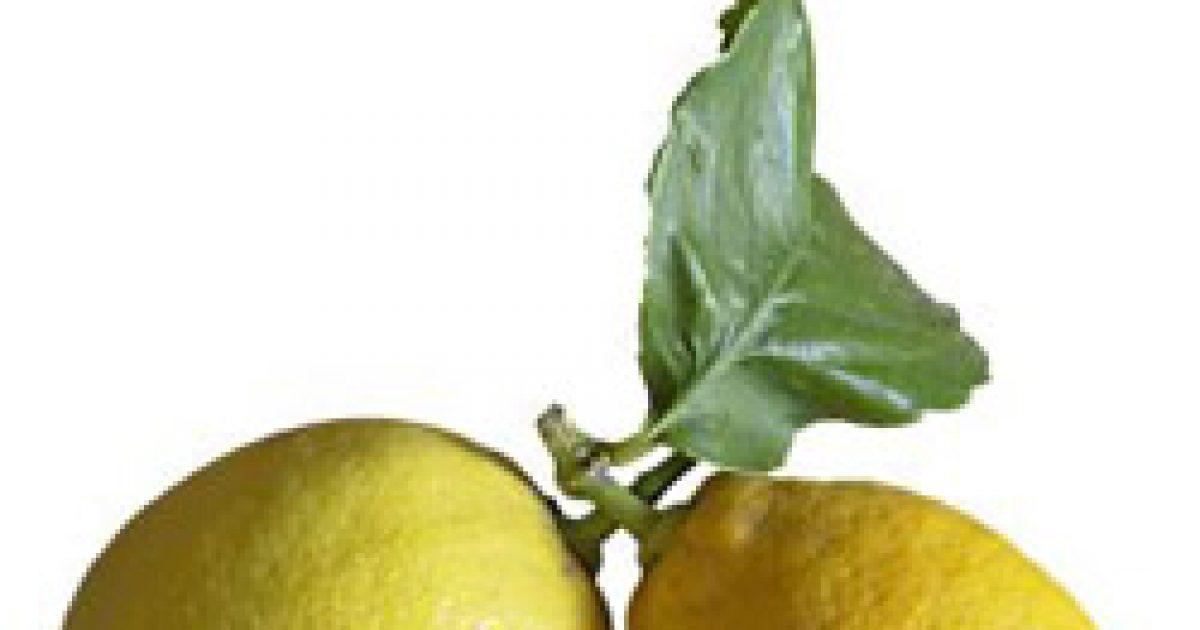 A citrom gyógyít és megszépít
