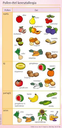 Keresztallergia táblázat