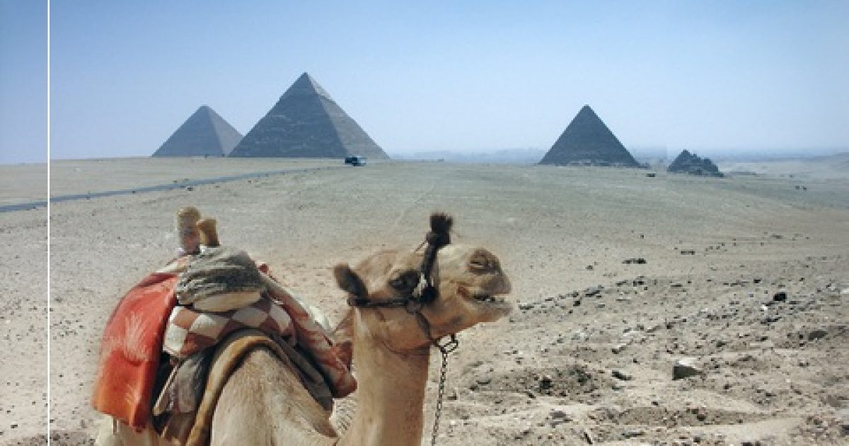 pikkelysömör kezelése egyiptomi safaga)