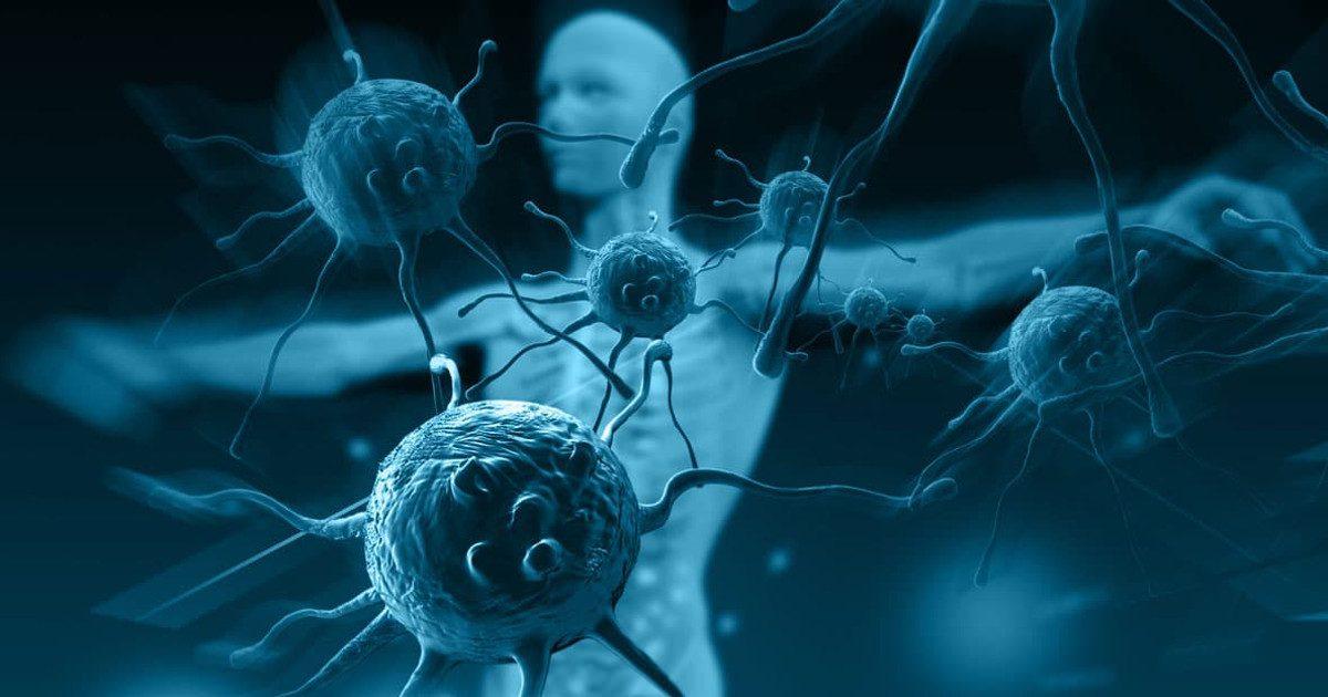 Az immunrendszer erősítésének abc-je