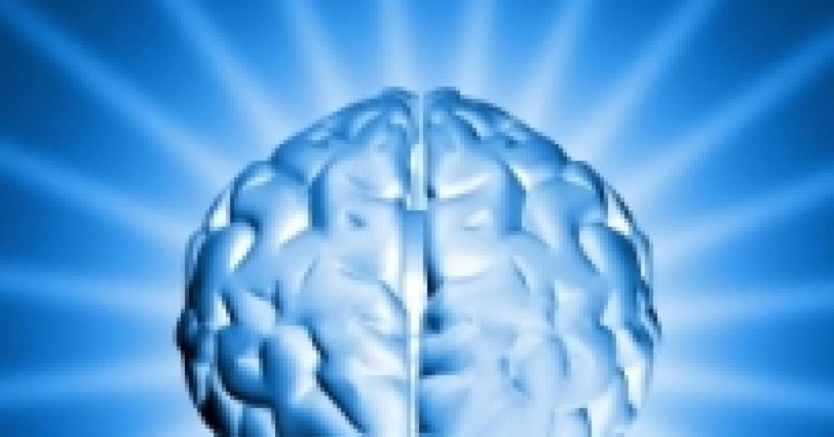 A probiotikumoktól javul az agy működése