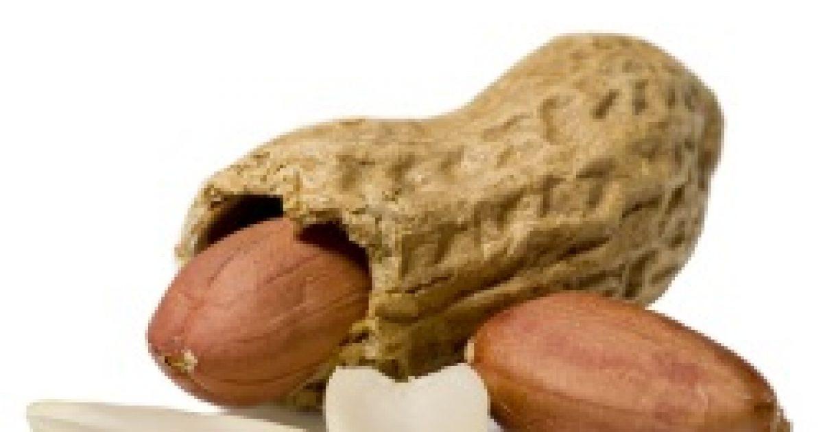 Biztonságos mogyoró allergiásoknak