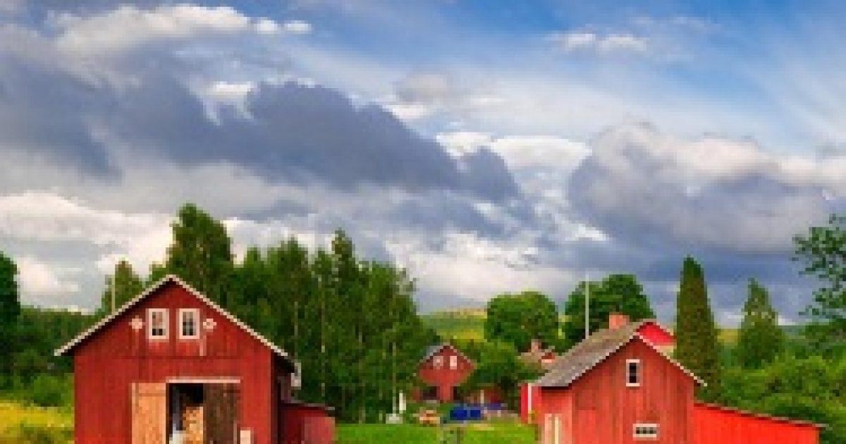 A farmon nevelkedett gyerekek között kevesebb az allergiás
