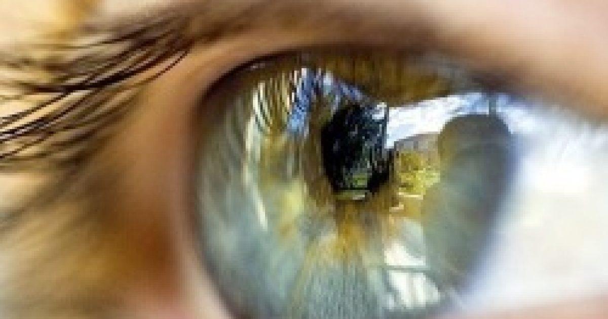 Ne becsüld alá a szemed memóriáját!