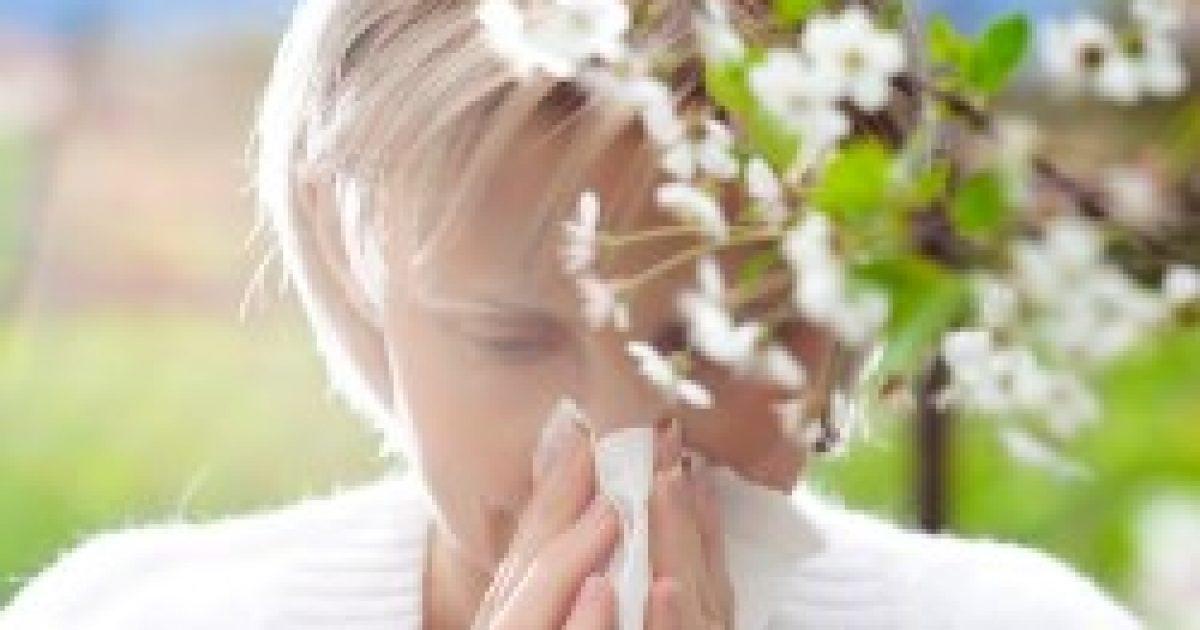 Szamártej allergia ellen
