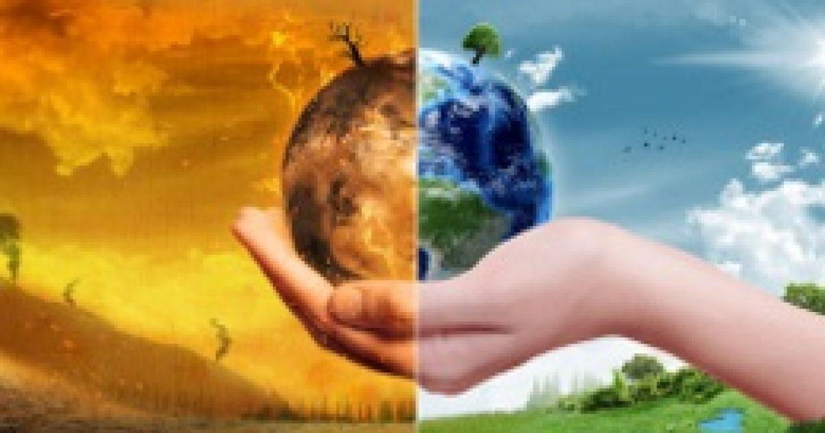 Mérgezővé válhat a búza a klímaváltozástól