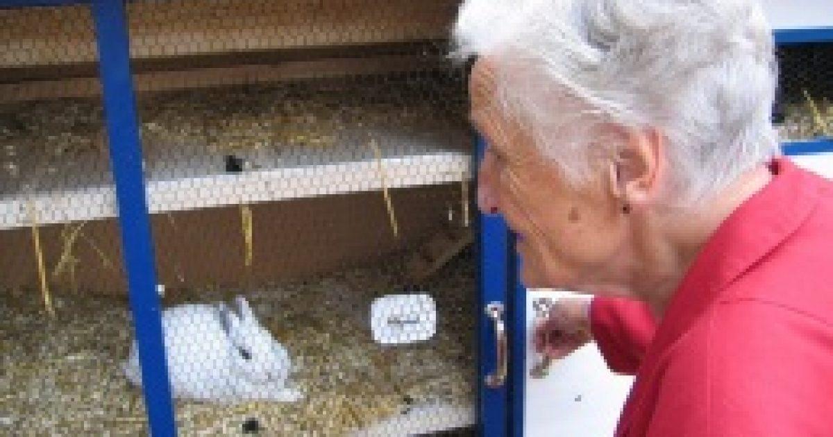 Alzheimer-kór – ha halványul az emlékezet