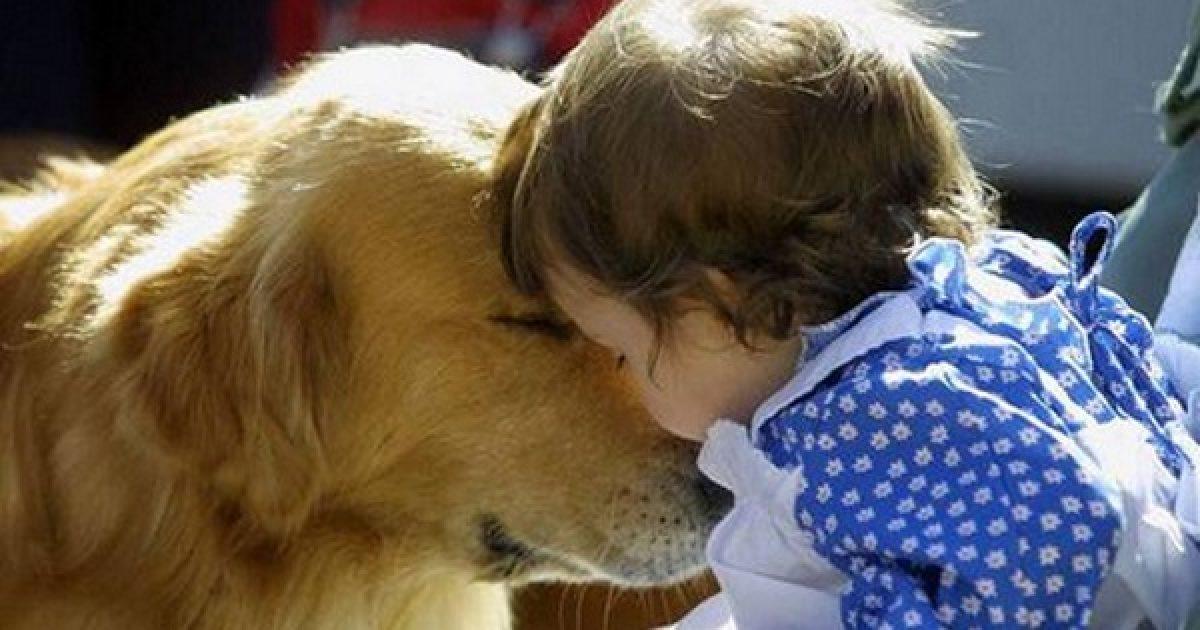 Jól jár a gyerek a háziállattal