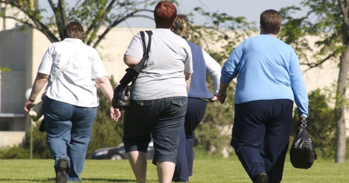 A munkáltatók nem szívesen vesznek fel kövér alkalmazottat