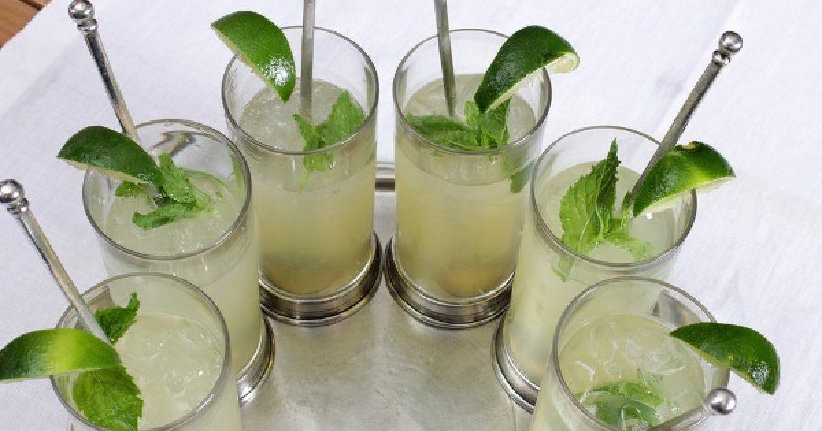 Izgalmas hűsítő italok gyógynövényekkel