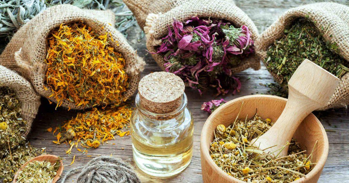 Gyomorfájás: a gyomor gyógynövényi jótevői