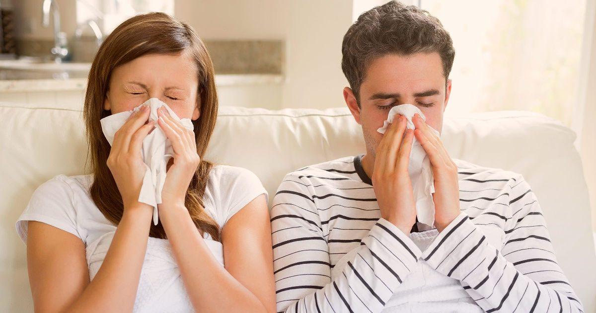 Flavocel – influenza, megfázás ellen