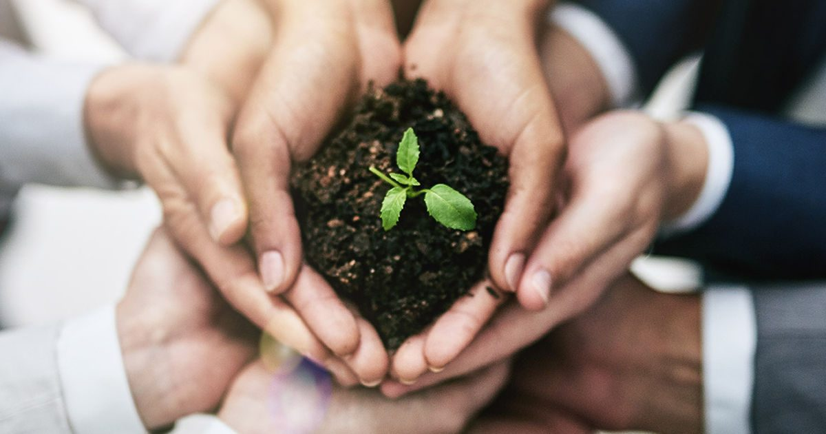 Fenntartható fejlődés (1): Nem önsanyargatás, csak észszerű egyszerűség