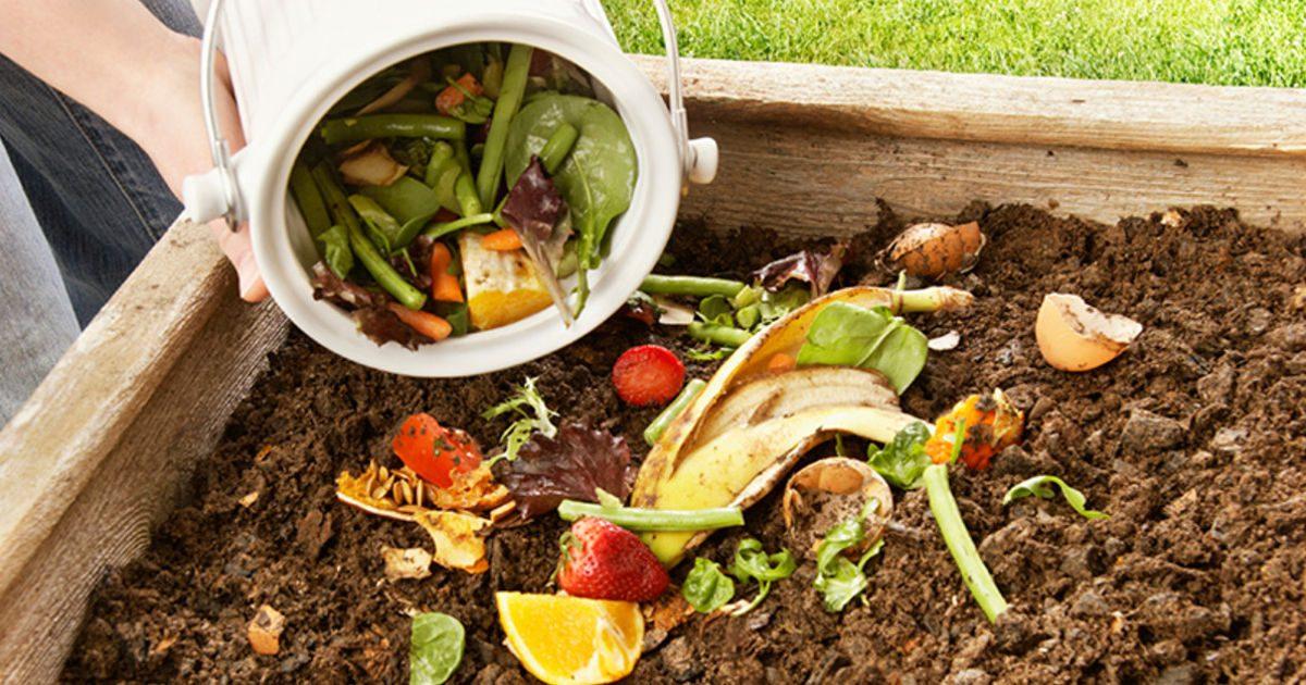 Komposztálás: ha lebomlik, adjuk vissza a természetnek!