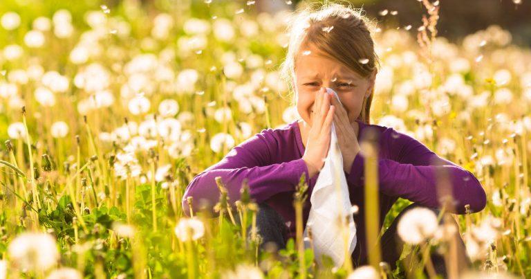 Szénanátha – mi segít pollenallergia esetén?